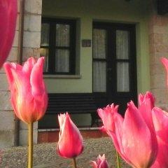 Отель Apartamentos Turísticos Finca Las Nieves фото 11