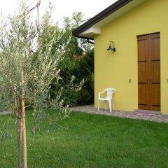 Отель Agriturismo Monteortone Италия, Региональный парк Colli Euganei - отзывы, цены и фото номеров - забронировать отель Agriturismo Monteortone онлайн фото 4