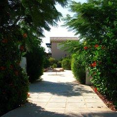 Отель Artisan Resort Кипр, Протарас - отзывы, цены и фото номеров - забронировать отель Artisan Resort онлайн фото 5