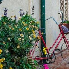Baronita Израиль, Зихрон-Яаков - отзывы, цены и фото номеров - забронировать отель Baronita онлайн балкон
