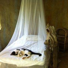 Отель Reflections Camp с домашними животными