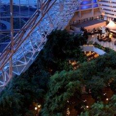 Отель Radisson Blu Resort, Sharjah фото 5