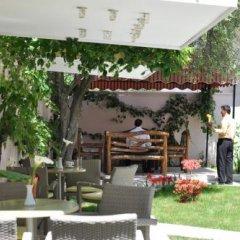 Отель Theranda Албания, Тирана - отзывы, цены и фото номеров - забронировать отель Theranda онлайн фото 12