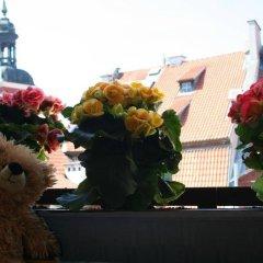 Отель Teddy Bear Hostel Riga Латвия, Рига - - забронировать отель Teddy Bear Hostel Riga, цены и фото номеров приотельная территория