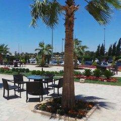 Отель Amman Airport Hotel Иордания, Аль-Джиза - отзывы, цены и фото номеров - забронировать отель Amman Airport Hotel онлайн фото 4