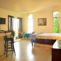 Отель Crystal Beach Studio Ямайка, Монтего-Бей - отзывы, цены и фото номеров - забронировать отель Crystal Beach Studio онлайн комната для гостей фото 2