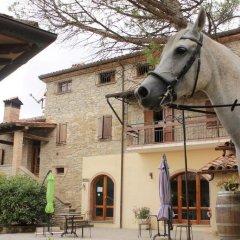 Отель Agriturismo Il Monte Монтоне
