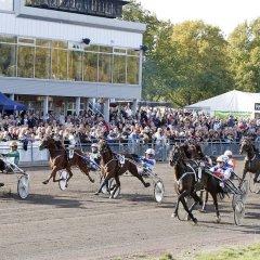 Отель Scandic Winn Швеция, Карлстад - отзывы, цены и фото номеров - забронировать отель Scandic Winn онлайн фото 2