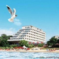 Baltic Beach Hotel & SPA пляж фото 4