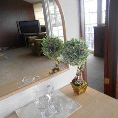 Гостиница Маяк в Сочи отзывы, цены и фото номеров - забронировать гостиницу Маяк онлайн комната для гостей фото 4