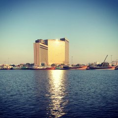 Отель Hyatt Regency Galleria Residence Дубай приотельная территория