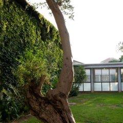 Tooly Eden Inn Израиль, Зихрон-Яаков - отзывы, цены и фото номеров - забронировать отель Tooly Eden Inn онлайн фото 7