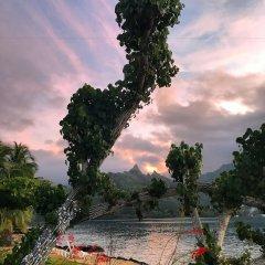 Отель Robinson's Cove Villas - Deluxe Wallis Villa Французская Полинезия, Муреа - отзывы, цены и фото номеров - забронировать отель Robinson's Cove Villas - Deluxe Wallis Villa онлайн фото 6