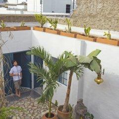 Отель Casa Blanco by Barrio Mexico Мексика, Гвадалахара - отзывы, цены и фото номеров - забронировать отель Casa Blanco by Barrio Mexico онлайн