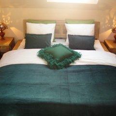 Отель B&B Impasse Pitchoune Бельгия, Брюссель - отзывы, цены и фото номеров - забронировать отель B&B Impasse Pitchoune онлайн комната для гостей фото 3