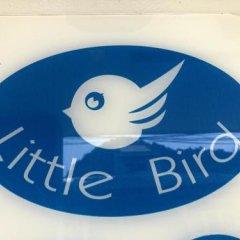Отель Little Bird Phuket Таиланд, Пхукет - отзывы, цены и фото номеров - забронировать отель Little Bird Phuket онлайн фото 3