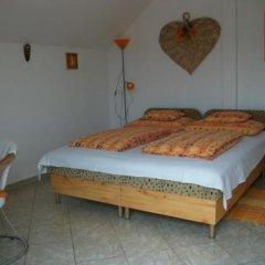 Отель Éden Vendégház Венгрия, Силвашварад - отзывы, цены и фото номеров - забронировать отель Éden Vendégház онлайн комната для гостей фото 4