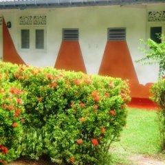 Отель Green Garden Guest House Шри-Ланка, Берувела - 1 отзыв об отеле, цены и фото номеров - забронировать отель Green Garden Guest House онлайн фото 9