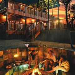 Отель Addo Afrique Estate развлечения
