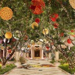 Отель Wynn Las Vegas США, Лас-Вегас - 1 отзыв об отеле, цены и фото номеров - забронировать отель Wynn Las Vegas онлайн фото 13