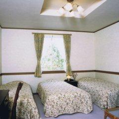 Отель Resort Inn White Silver Хакуба комната для гостей фото 2