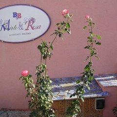 Отель Il Mirto e la Rosa Агридженто с домашними животными