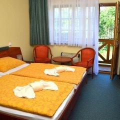 Отель Resort Stein Чехия, Хеб - отзывы, цены и фото номеров - забронировать отель Resort Stein онлайн комната для гостей фото 5