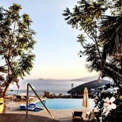 Mediteran Hotel Турция, Калкан - отзывы, цены и фото номеров - забронировать отель Mediteran Hotel онлайн бассейн