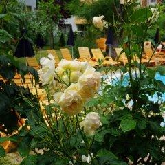 Отель Yassen Болгария, Солнечный берег - отзывы, цены и фото номеров - забронировать отель Yassen онлайн фото 2