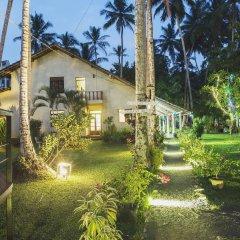 Отель Kahuna Hotel Шри-Ланка, Галле - 1 отзыв об отеле, цены и фото номеров - забронировать отель Kahuna Hotel онлайн фото 6