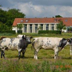 Отель Cleythil Hotel Бельгия, Мальдегем - отзывы, цены и фото номеров - забронировать отель Cleythil Hotel онлайн с домашними животными