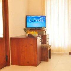 Отель Oasey Beach Resort Шри-Ланка, Бентота - отзывы, цены и фото номеров - забронировать отель Oasey Beach Resort онлайн удобства в номере