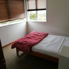 Отель Uenuku Lodge - Hostel Новая Зеландия, Окленд - отзывы, цены и фото номеров - забронировать отель Uenuku Lodge - Hostel онлайн комната для гостей фото 5
