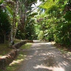 Отель Colo-I-Suva Rainforest Eco Resort Вити-Леву фото 10