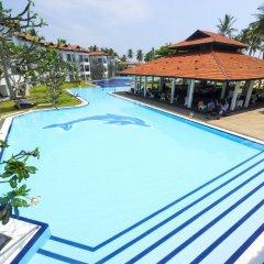 Отель Club Hotel Dolphin Шри-Ланка, Вайккал - отзывы, цены и фото номеров - забронировать отель Club Hotel Dolphin онлайн бассейн
