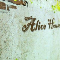 Alice Hostel сауна