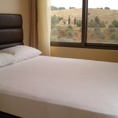 Отель Town of Nebo Hotel Иордания, Аль-Джиза - отзывы, цены и фото номеров - забронировать отель Town of Nebo Hotel онлайн комната для гостей фото 3