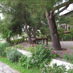 Отель Para Thin Alos Греция, Ситония - отзывы, цены и фото номеров - забронировать отель Para Thin Alos онлайн фото 24