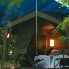 Отель Big Game Camp Yala Шри-Ланка, Катарагама - отзывы, цены и фото номеров - забронировать отель Big Game Camp Yala онлайн бассейн