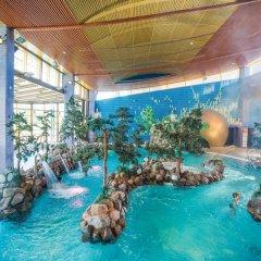 Отель Imatra Spa Sport Camp Финляндия, Иматра - 6 отзывов об отеле, цены и фото номеров - забронировать отель Imatra Spa Sport Camp онлайн бассейн фото 2