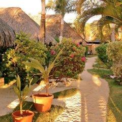 Отель Village Temanuata Французская Полинезия, Бора-Бора - отзывы, цены и фото номеров - забронировать отель Village Temanuata онлайн фото 2