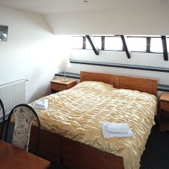 Hotel Jana / Pension Domov Mladeze комната для гостей фото 4