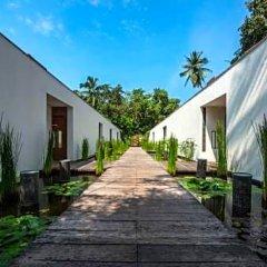 Отель Alila Diwa Гоа фото 9
