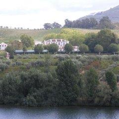 Отель The Wine House Hotel - Quinta da Pacheca Португалия, Ламего - отзывы, цены и фото номеров - забронировать отель The Wine House Hotel - Quinta da Pacheca онлайн фото 2