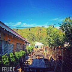 Отель Felice Resort фото 2