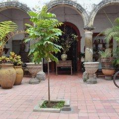 Отель Casa Guadalupe GDL Мексика, Гвадалахара - отзывы, цены и фото номеров - забронировать отель Casa Guadalupe GDL онлайн фото 4