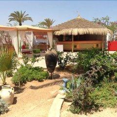Отель Rodes Тунис, Мидун - отзывы, цены и фото номеров - забронировать отель Rodes онлайн фото 8