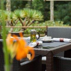 Terra Nostra Garden Hotel питание фото 3