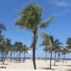 Seminole Hard Rock Hotel and Casino пляж фото 2