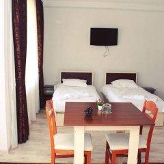 Отель Family Hotel Aleks Болгария, Ардино - отзывы, цены и фото номеров - забронировать отель Family Hotel Aleks онлайн фото 11